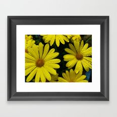 Yellow Flowers After the Misting Framed Art Print