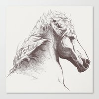 Cheval Canvas Print
