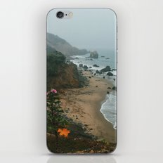 Land's End coast iPhone & iPod Skin