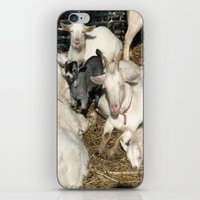 Sea of White iPhone & iPod Skin