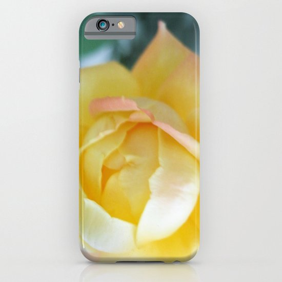 Yellow Rose iPhone & iPod Case