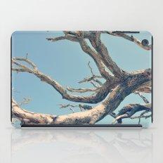 Driftwood Ladder iPad Case