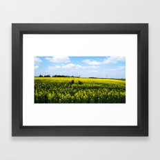 Rapeseed Field Framed Art Print