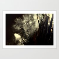 Sunlight, Shadows And Sm… Art Print