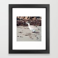 Framed Art Print featuring Willet Birdy  by Cristina Buentello