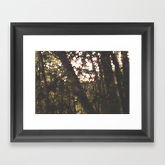out of f Framed Art Print