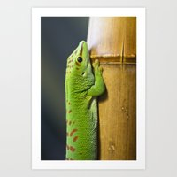 Mr. Green Art Print
