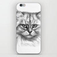 Expressive Glance Cat G1… iPhone & iPod Skin