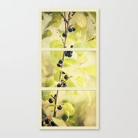 Summer Berries Canvas Print