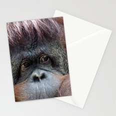 Pongo Stationery Cards