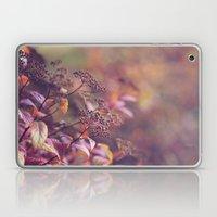 Everything Has Beauty, B… Laptop & iPad Skin