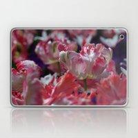 Candy Parrot Tulips Laptop & iPad Skin