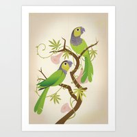 Black-capped conure Art Print