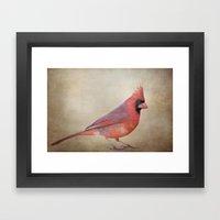 The Red Cardinal Framed Art Print