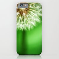 iPhone & iPod Case featuring Dandelion by Amy Joyce