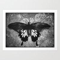 Butterfly#1  Art Print