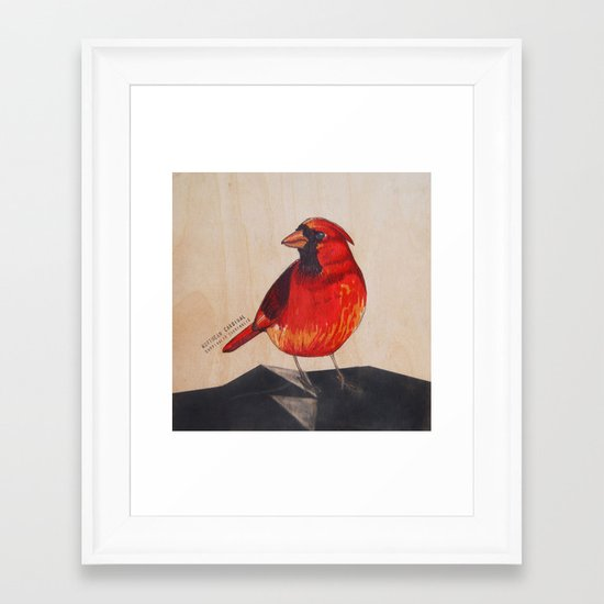 Northern Cardinal Framed Art Print