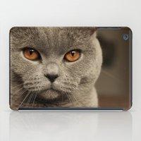 Diesel, the cat - (close up)  iPad Case