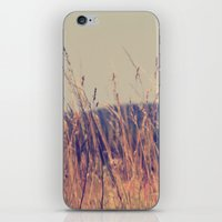 Wheat Field iPhone & iPod Skin