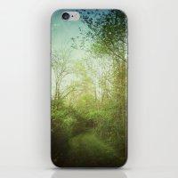 Follow Your Life Path iPhone & iPod Skin