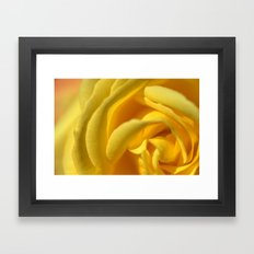 Orient Rose 2486 Framed Art Print
