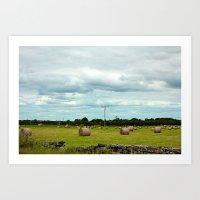 Hay Barrels Art Print
