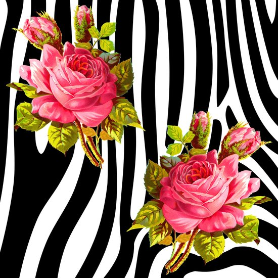 Zebra in the garden Art Print