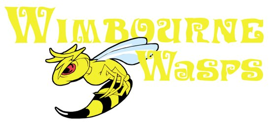 The Wimbourne Wasps Art Print