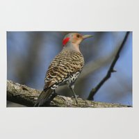 Northern Flicker Rug