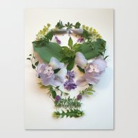 Botanical 4 Canvas Print