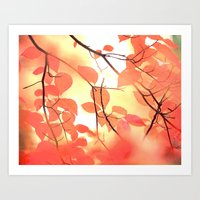 Ablaze With Color Art Print