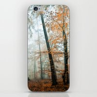 Forest Colors iPhone & iPod Skin