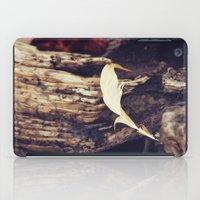 Beach Feathers iPad Case