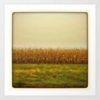 Corn Lines Art Print
