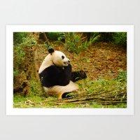 PANDA, Yes! Art Print
