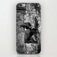 Rambunctious iPhone & iPod Skin