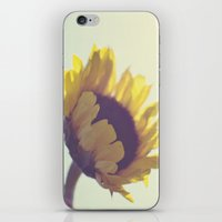 Sunny Sunflower iPhone & iPod Skin