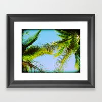 Palm Trees Tropical Photography Framed Art Print