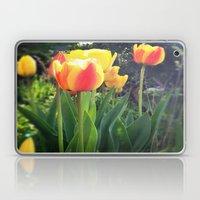 Spring Tulips in Bloom Laptop & iPad Skin