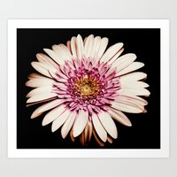 FLOWERS V Art Print