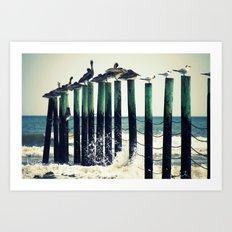 Pelicans on Pilings Art Print