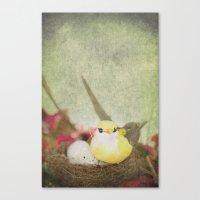 Little Bird Canvas Print