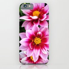 Valses iPhone 6 Slim Case