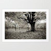 Wind and Leaves - B&W Art Print