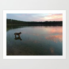 silver lake reflection Art Print