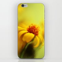 Bring Me Sunshine iPhone & iPod Skin