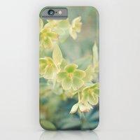 Spring Garden iPhone 6 Slim Case