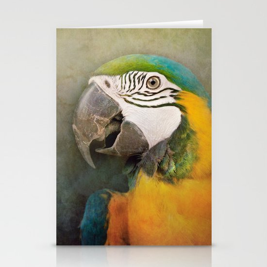 Portrait of a Parrot Stationery Card