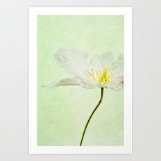 A FLOWER II Art Print