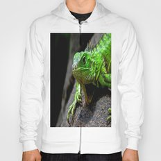 The Lizard King of Aruba Hoody